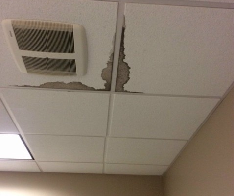Ceiling Tile Replacement - Before